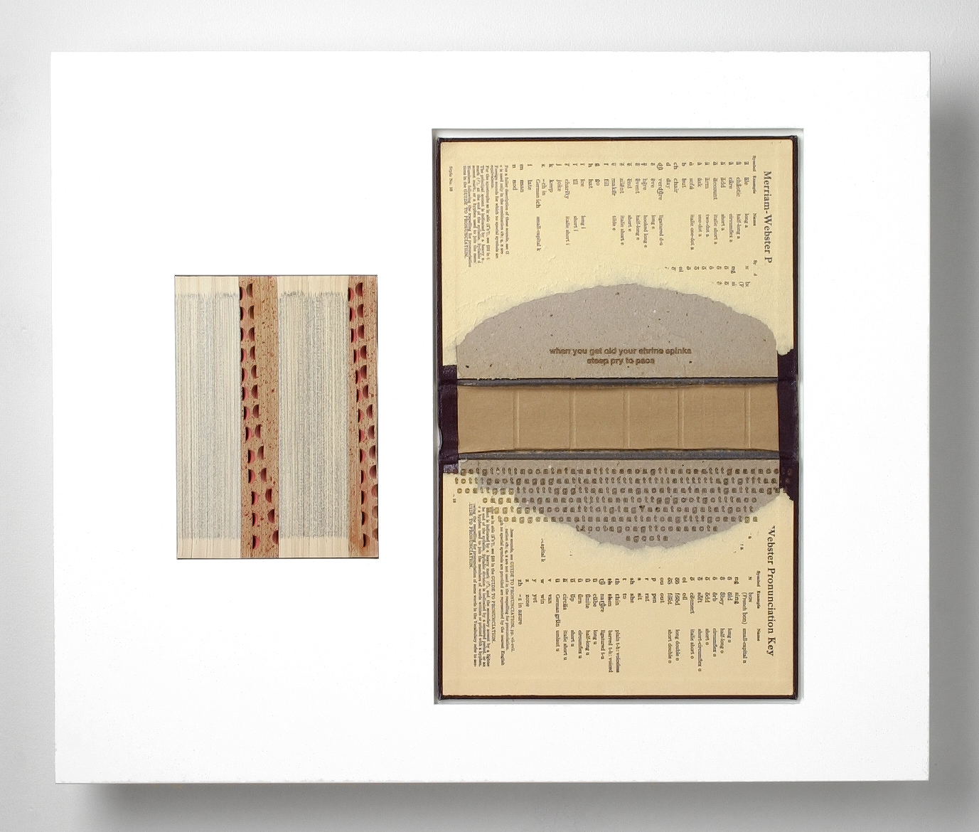 SNPs/slips (18) , laser engraved dictionary cover, pages, in lacquered frame, 20 x 24 x 2.75 inches, 2003