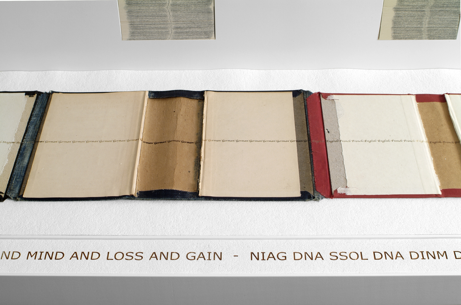 ledger    joins dictionary covers of multiple languages into one long (twelve foot) book cover placed on a shelf. The shelf is backed with mounted cut dictionary pages placed vertically in columns. Text is engraved into the surface of the covers and into a piece of felt to explore ideas about personal and universal measurements of loss and gain.