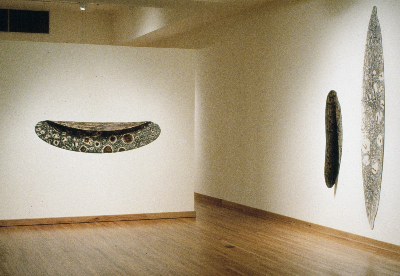 Installation, Jane Lackey, Gallery of Art, JCCC,  Plicare ,  Fold ,  Elongated Ellipse , burned industrial felt, acrylic, oil, wax, 1994