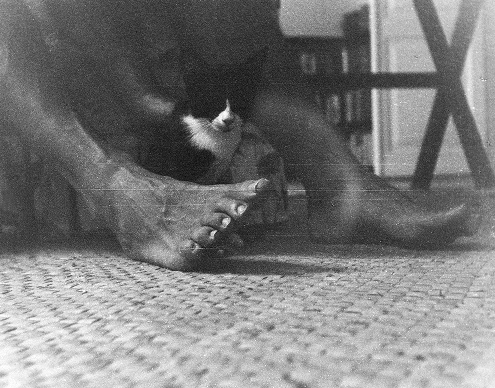 """"""" A kitten sits between Ernest Hemingway's feet at Finca Vigia,"""" Year Unknown.Ernest Hemingway Collection, John F. Kennedy Presidential Library and Museum, Boston."""