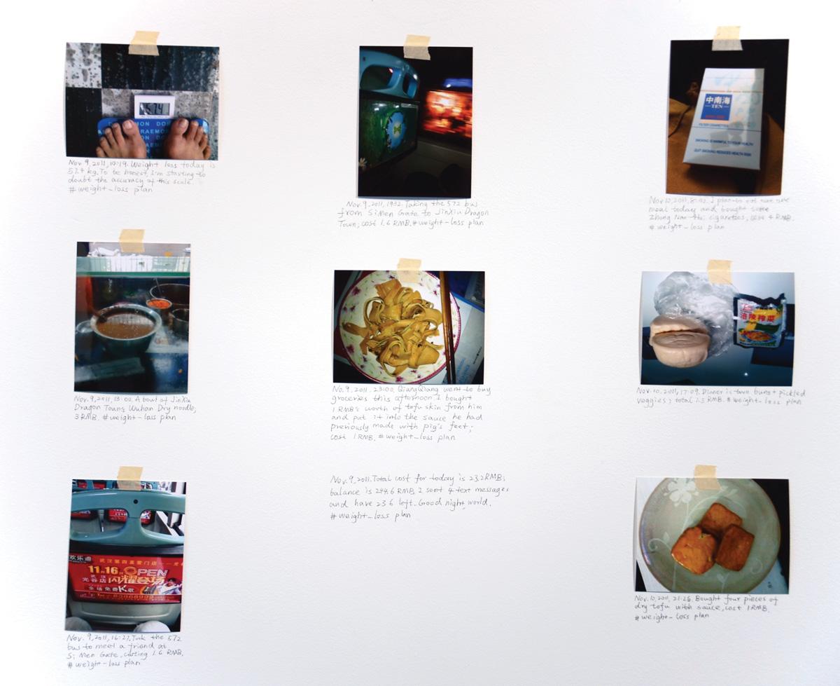 Installation-view-Weight-Loss-Plan-detail-2011-courtesy-Klein-Sun-Gallery.jpg