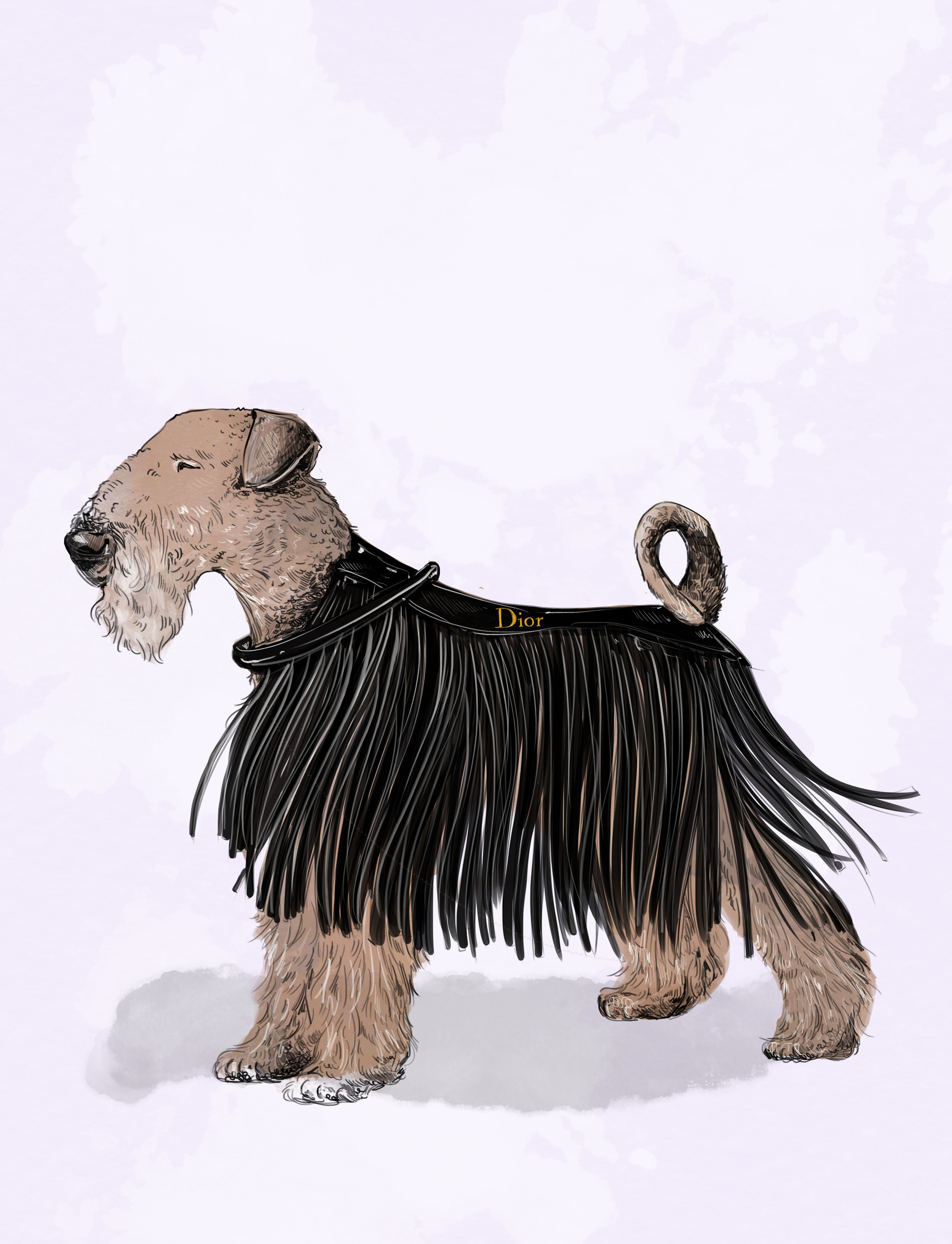 DIOR bag and SCANDINAVIAN LABORSKI canine | Illustrated by Amber Day