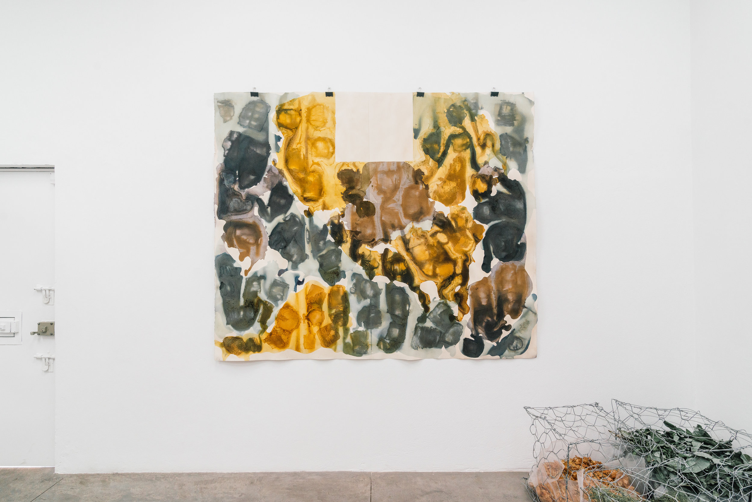 Carmen Argote,  Arrangement of Contained Energies , 2018, Organic dyes (Jamaica, onion, avocado), Paper, 50 x 38 inches.