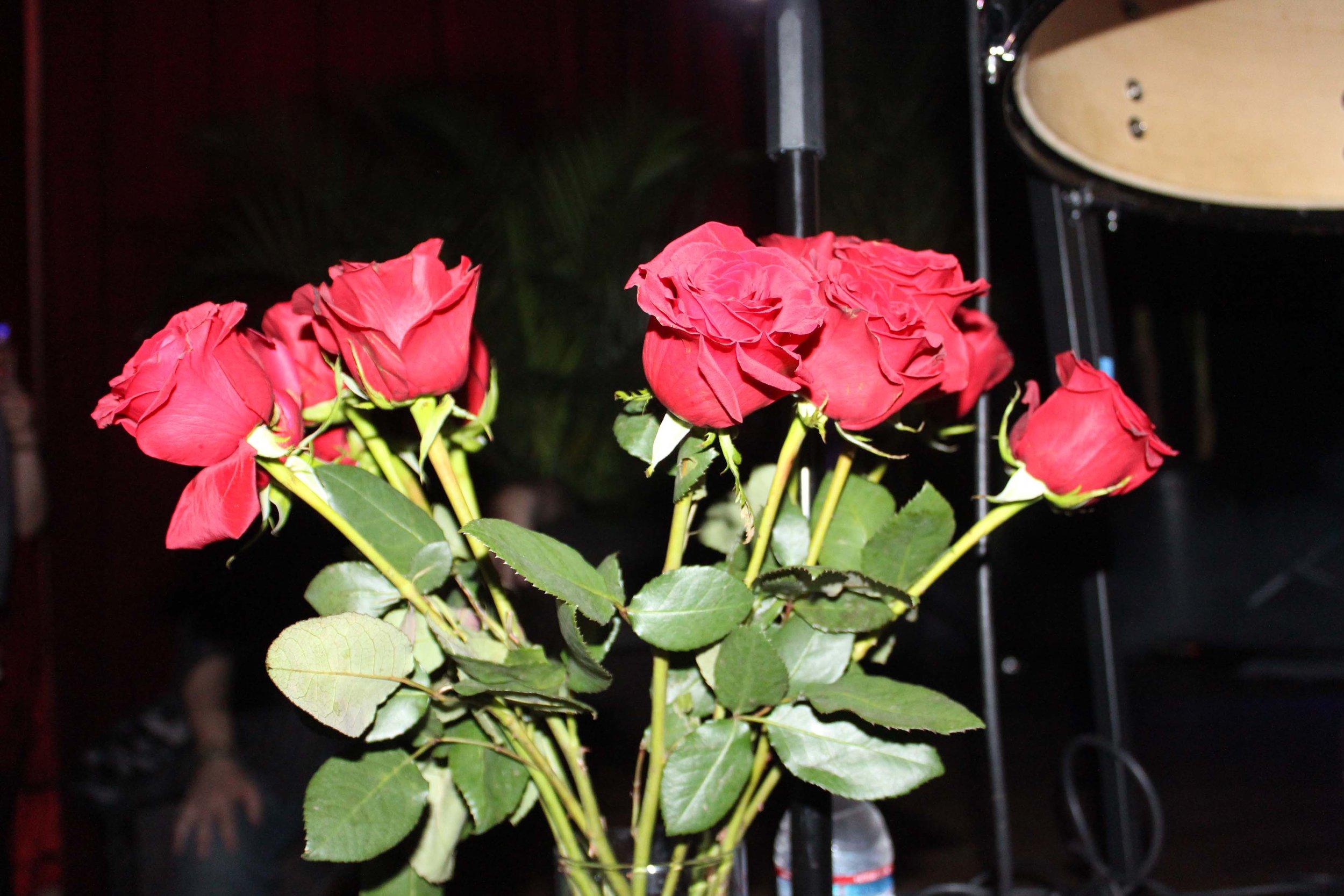 roses in the dark.jpg