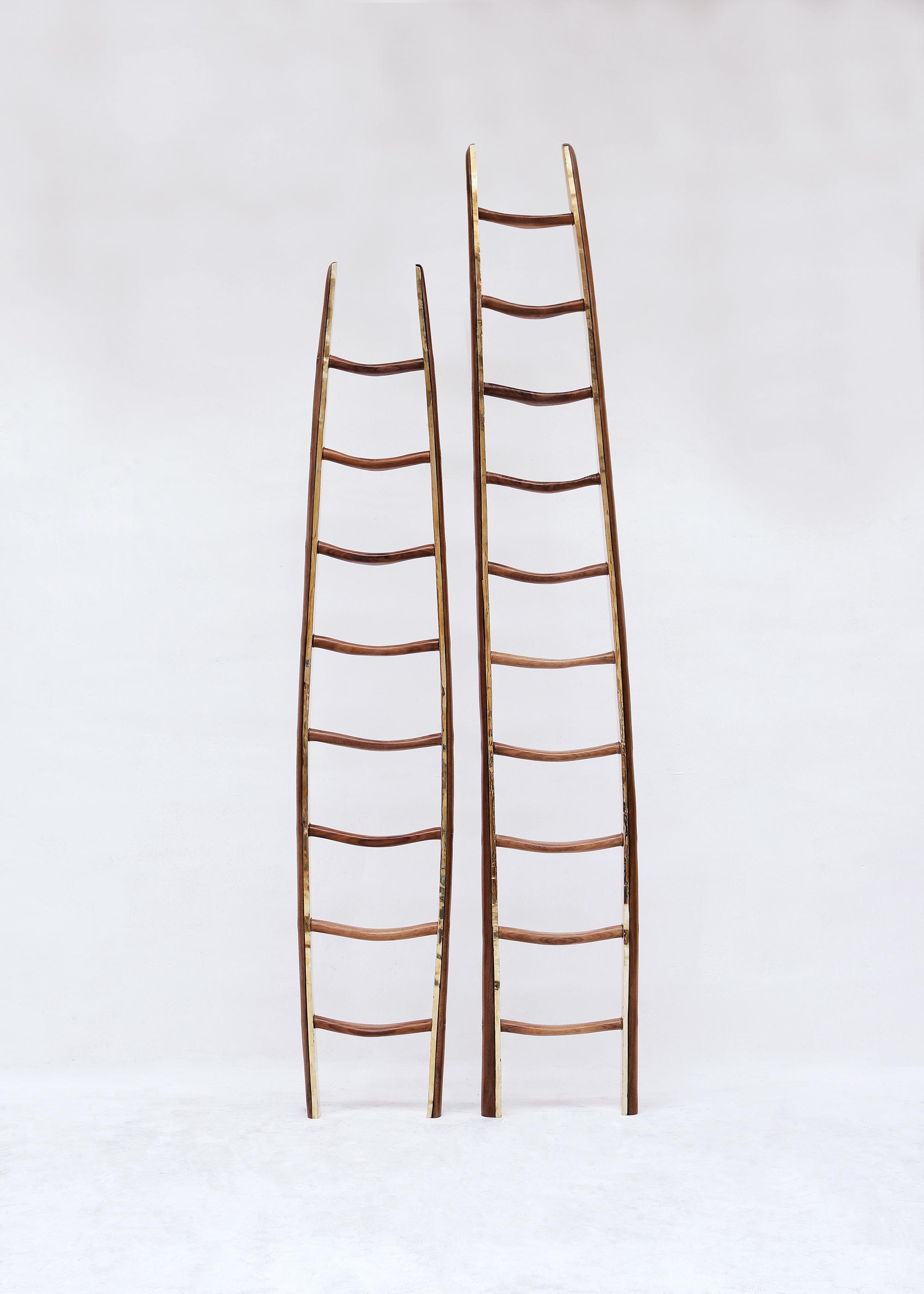 ladders_01.jpg
