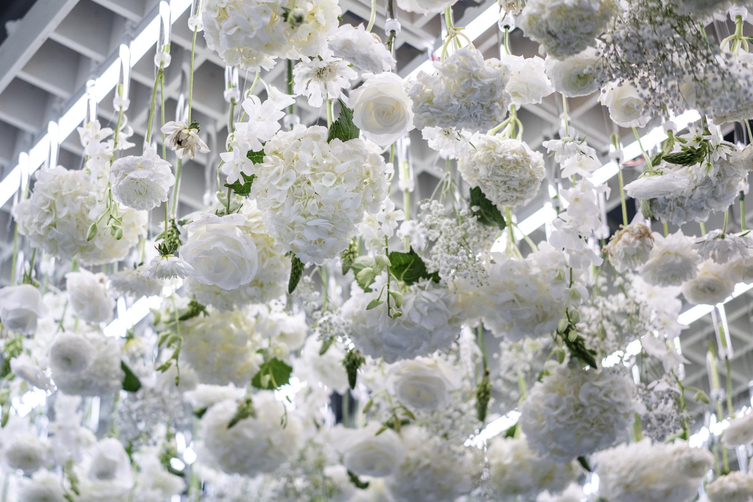 Art of Bloom,   Brandon Shigeta