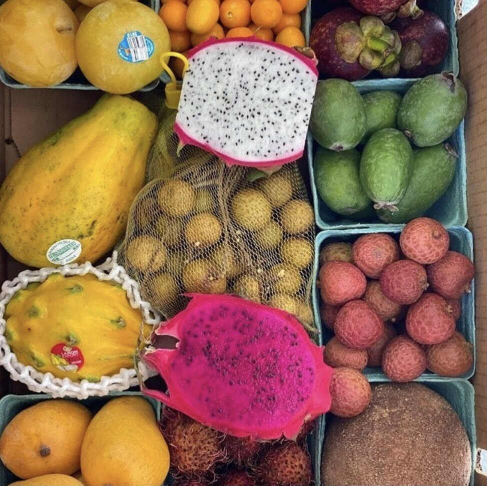 Flaunt_full_moon_fruits