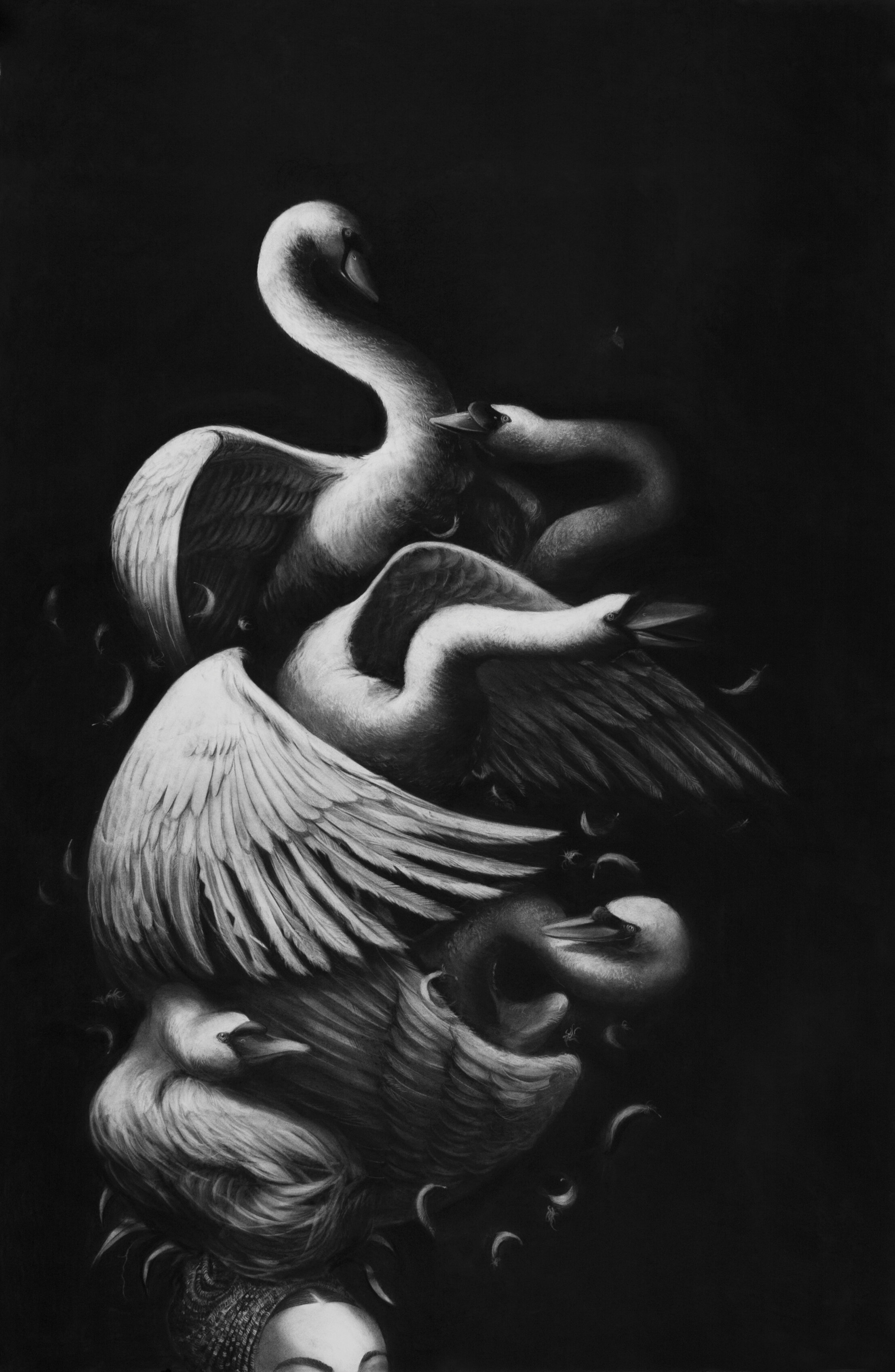 "Gonzalo Fuenmayor. ""Carmen Leda"" (2015). Charcoal on paper. 69"" x 45"". Courtesy of the artist."