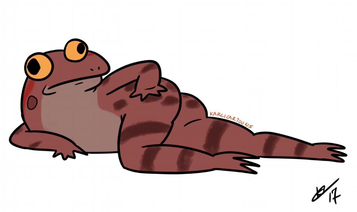 California Red Legged Frog    Artist : Karli Melder  Twitter :  @KarliCartoons   Website :  http://www.karlicartoons.com