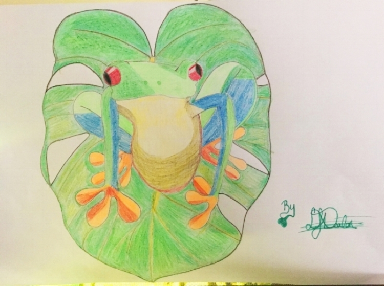 South American Beauty: The Red Eye Tree Frog    Artist : Lana Deaton  Instagram :  @mrsljdeaton   Twitter :  @EdenDeatonQueen   Email : lanajdeaton@hotmail.com