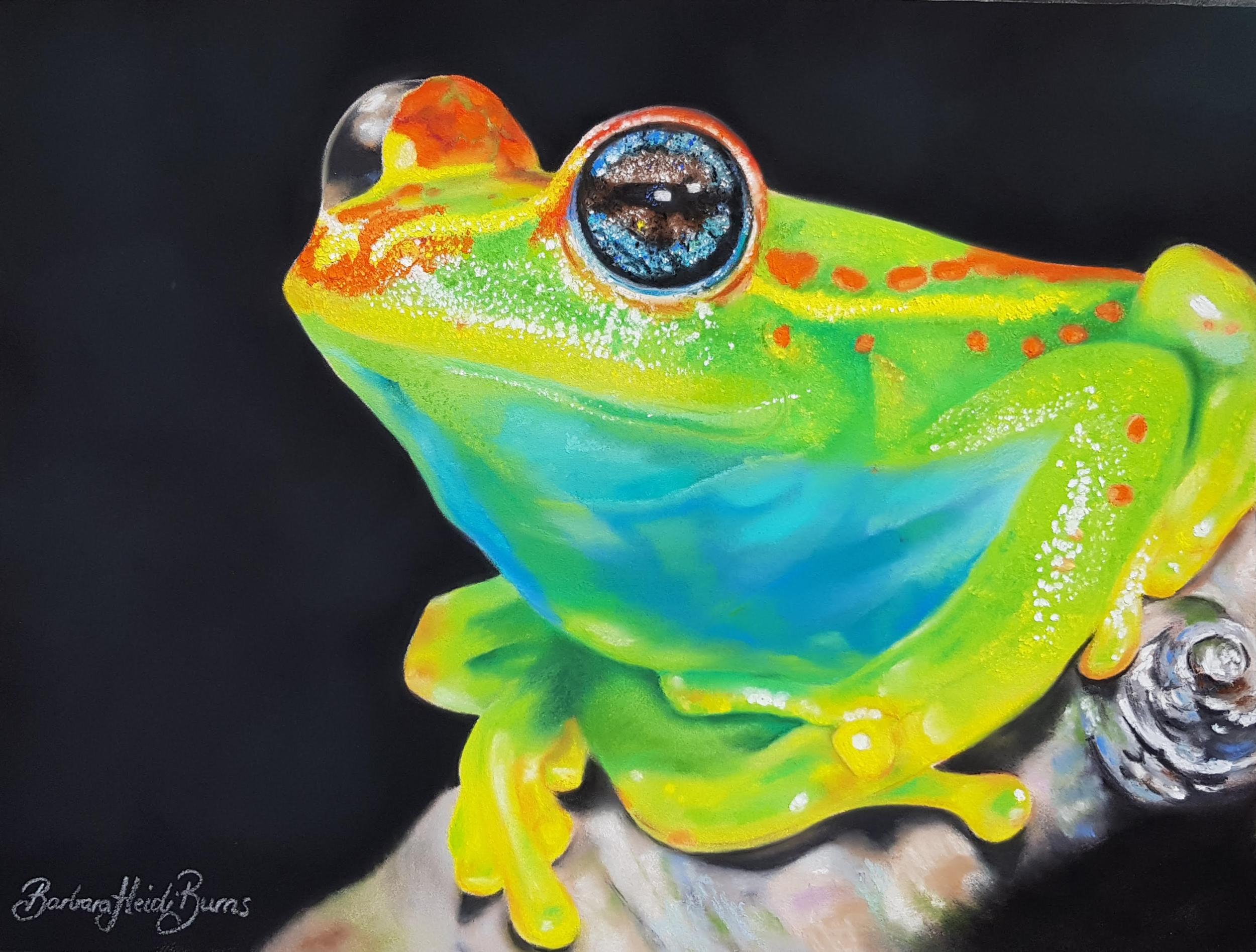 Title: 'Meet me in Madagascar' (Bright-eyed Frog: Boophis rappiodes)    Artist : Barbara Heidi Burns  Instagram :  @barbaraheidiburnsartist   Facebook :  https://www.facebook.com/BarbHeidiBurnsArt