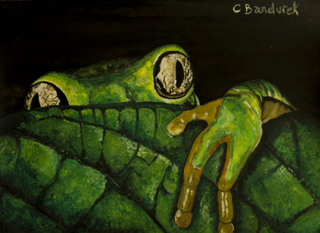 Artist : Cynthia Bandurek  Instagram :  @cynthiabandurek_artphotography   Website :  https://cynthiabandurek.com/
