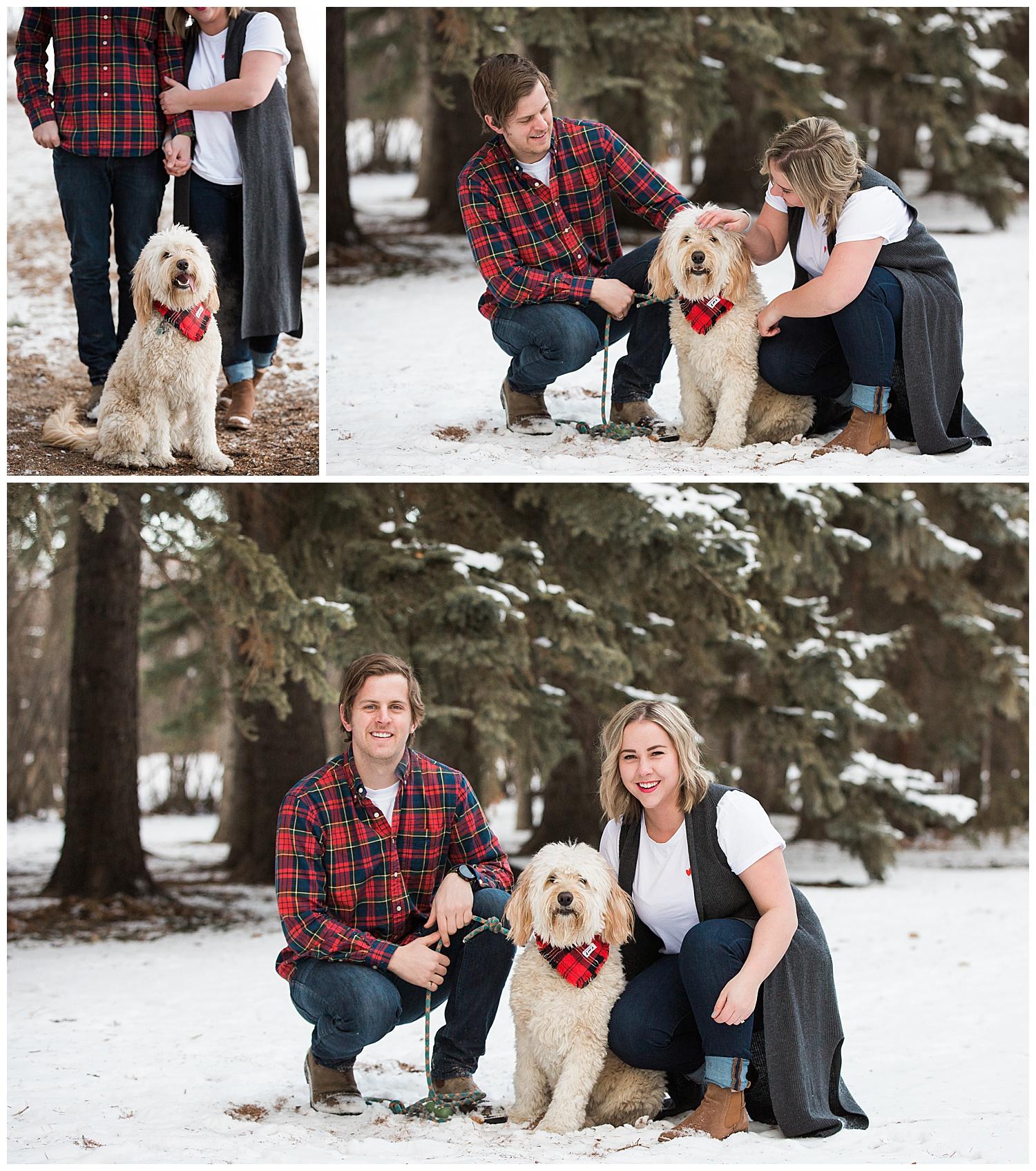 calgary-engagement-dog-3.jpg