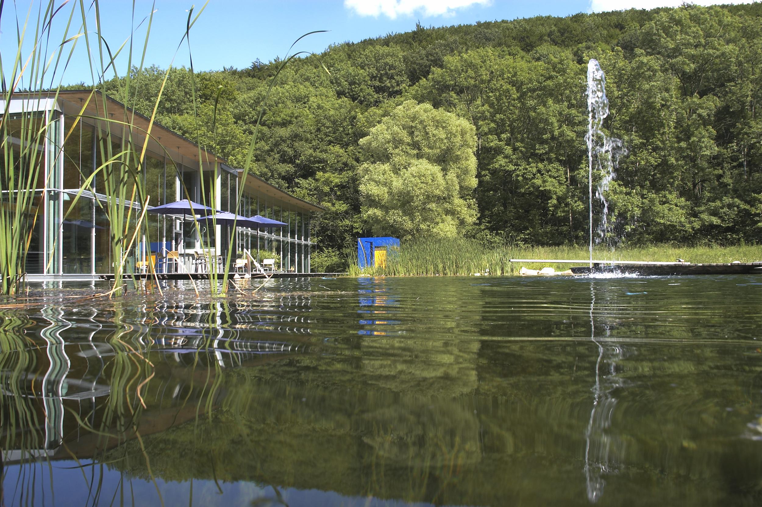 Natural Pool 001.jpg