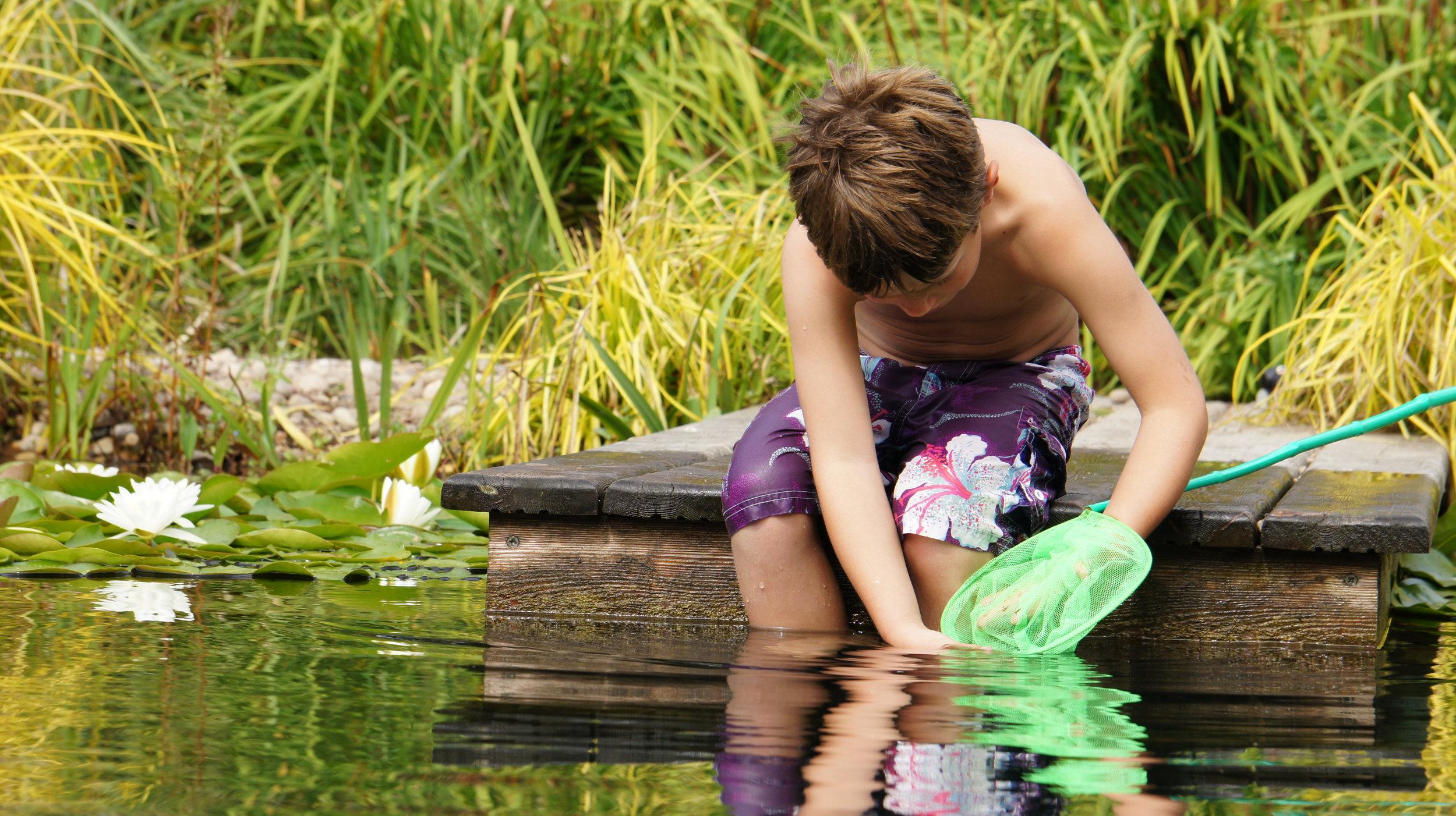 Fishing for wildlife Ellicar Natural Pool