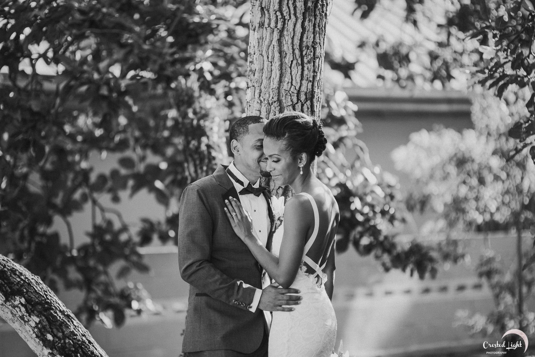 Santa Cruz Trinidad Wedding 09.jpg