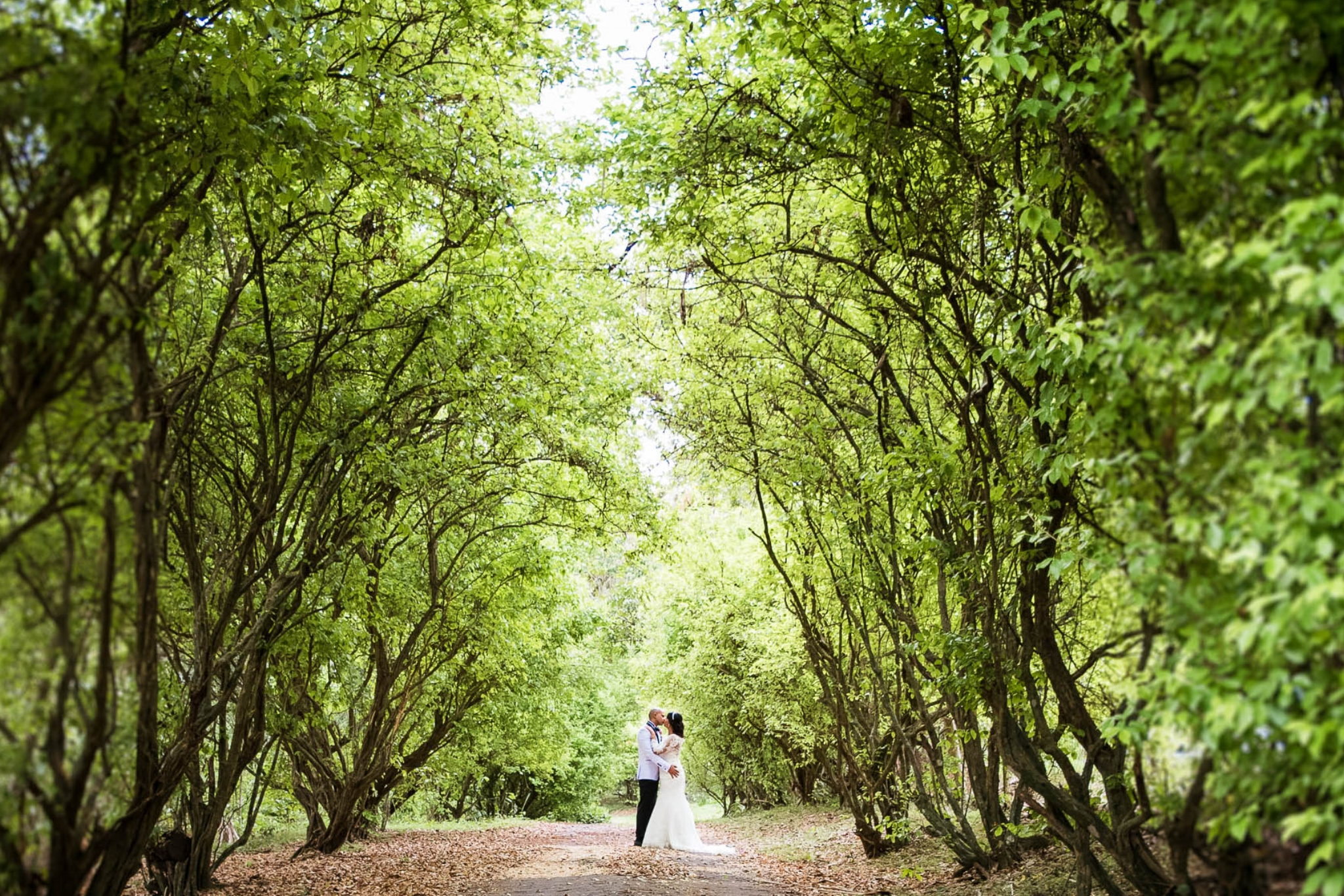 Ajoupa Gardens Trinidad Wedding and Engagement Photography