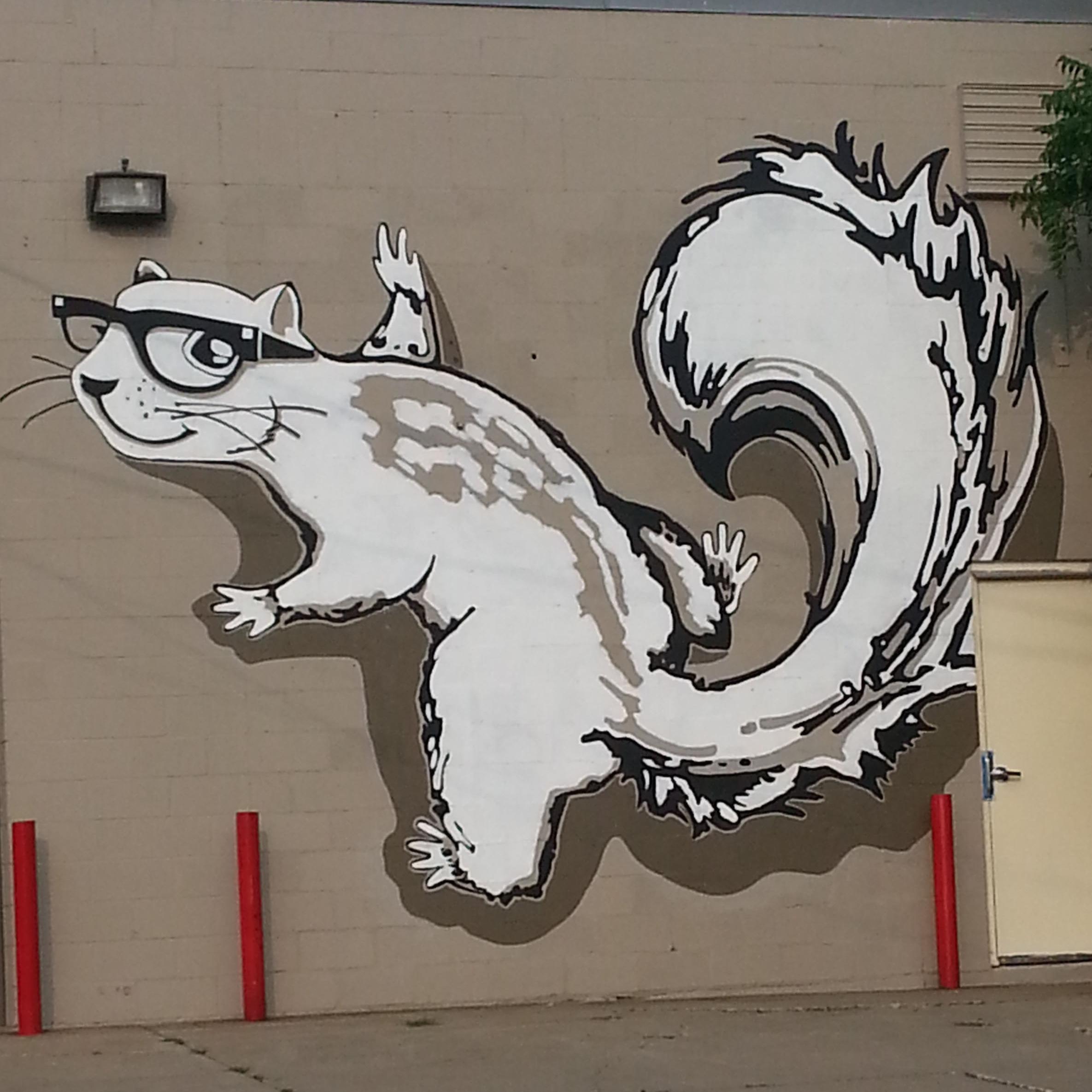 squirrelhaus.jpg