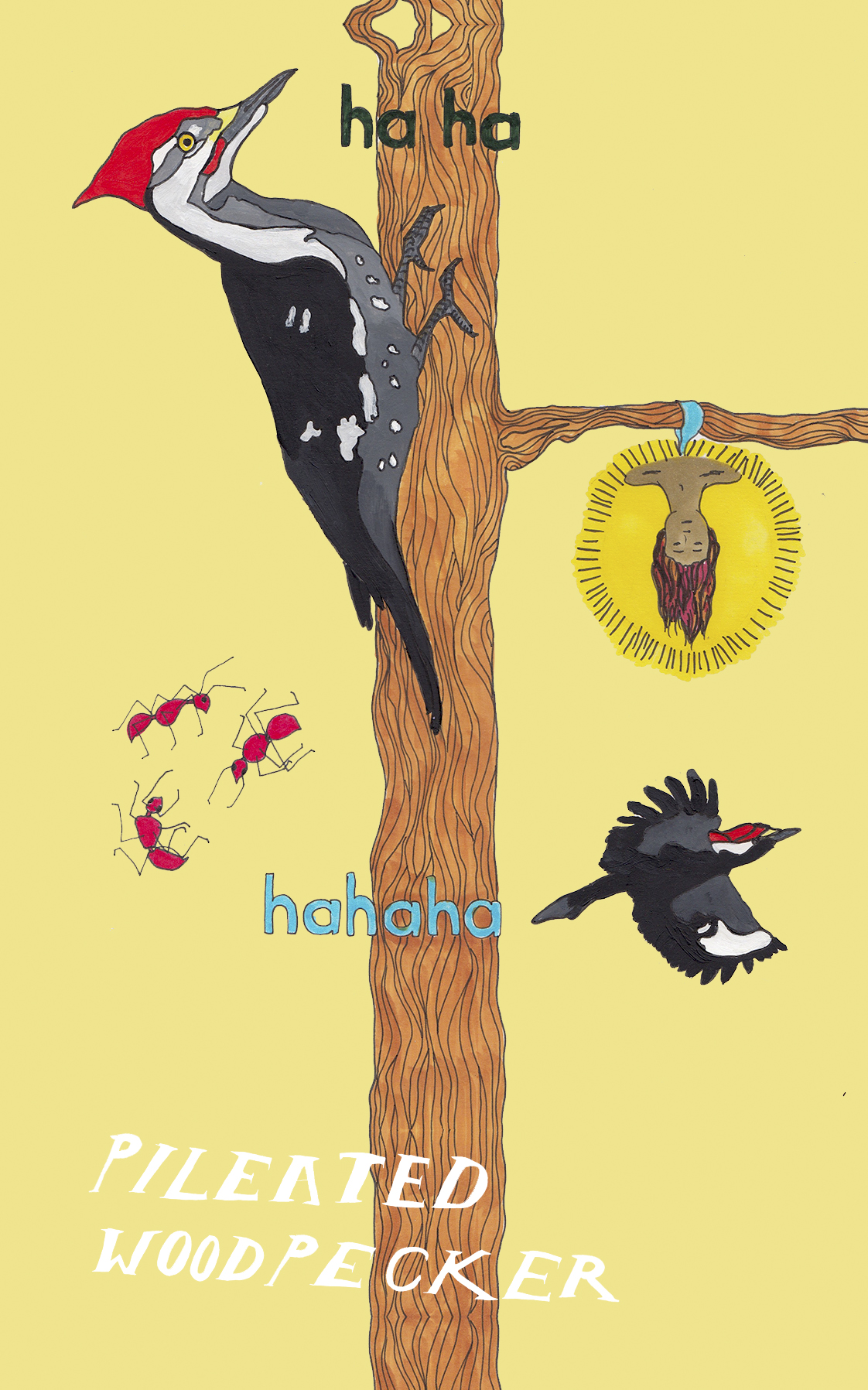 12 woodpecker hanged man.jpg