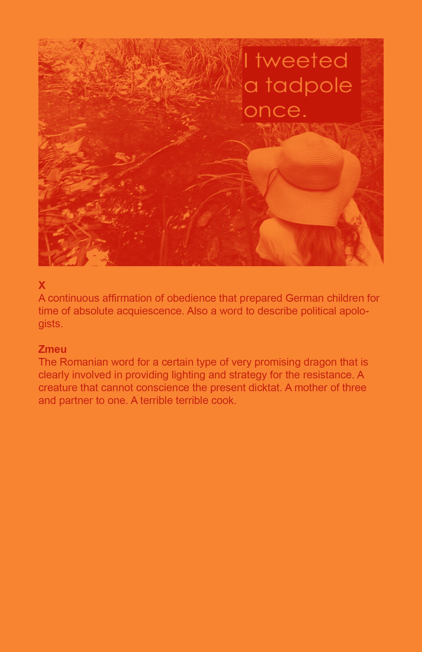 ALINA STEFANESCU.pdf-10.jpg