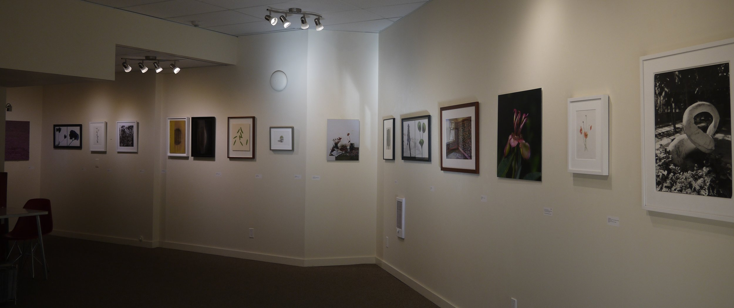 Installation view from gallery entrance