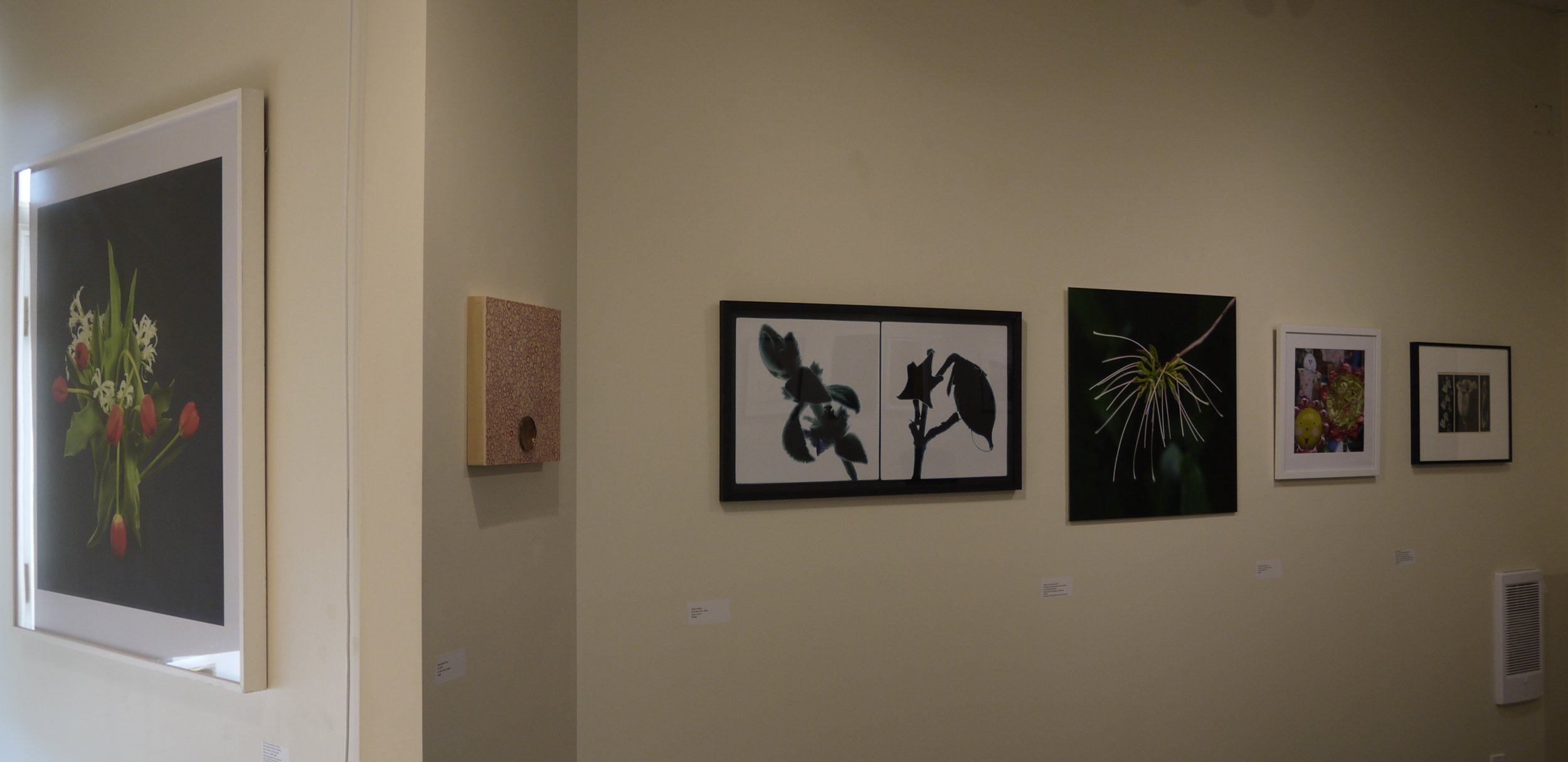 Installation view at gallery entrance north