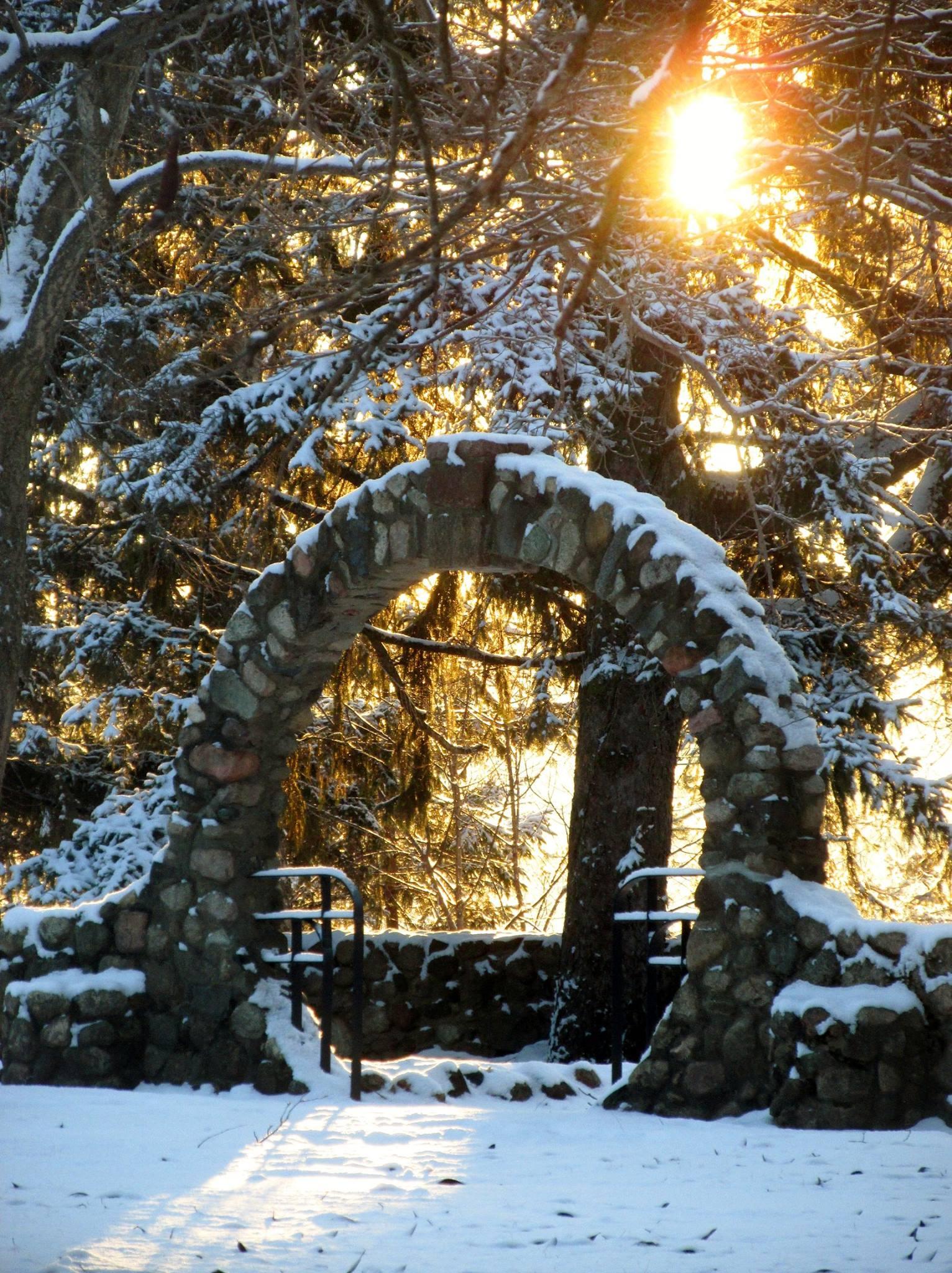 ring winter.jpg