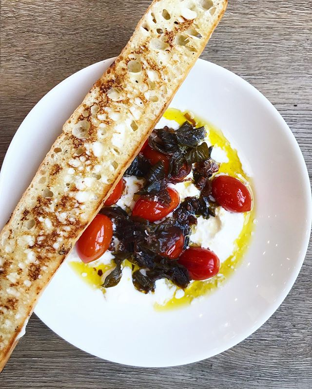 🍅🌱NEW DISH🌱🍅 our latest version of the classic #caprese • confit tomatoes • garlicky herb oil • basil • straciatella • crusty bread with garlic aioli