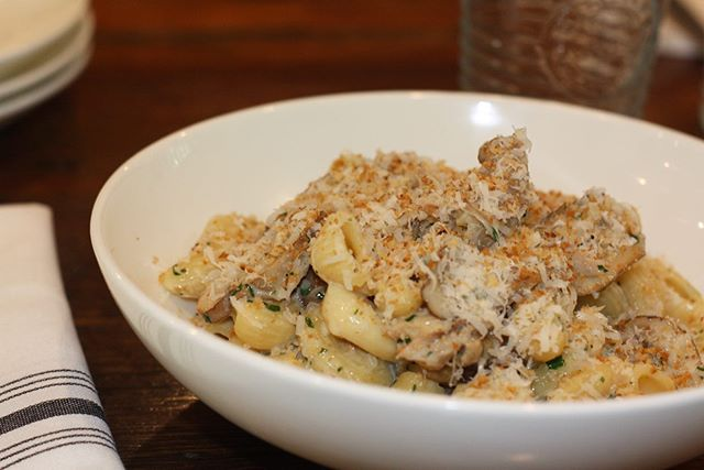 Somehow😒 we missed #NationalPastaDay🍝 So here's our appreciation post for one of the best dishes on our menu! Our #Canestri creamy rabbit + mushroom ragout, lemony bread crumbs, parm, herbs