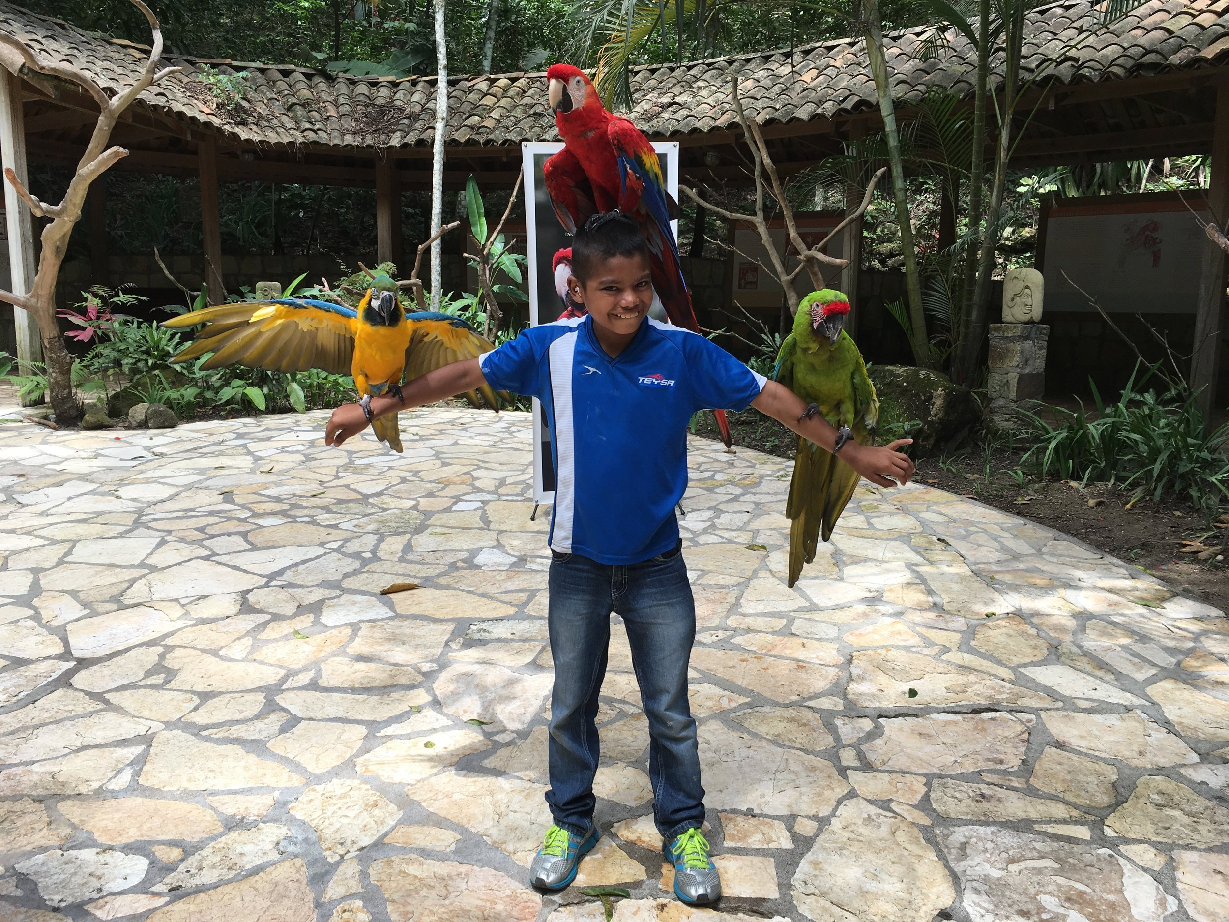 Emanuel visiting the Macaw Mountain Bird Park and Nature Reserve in Copan Ruinas during October vacations last year.