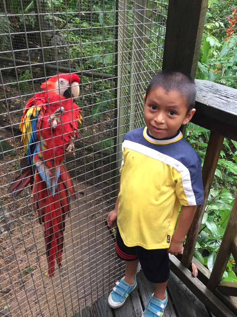 Agustin with the Scarlet Macaw, the National Bird of Honduras.