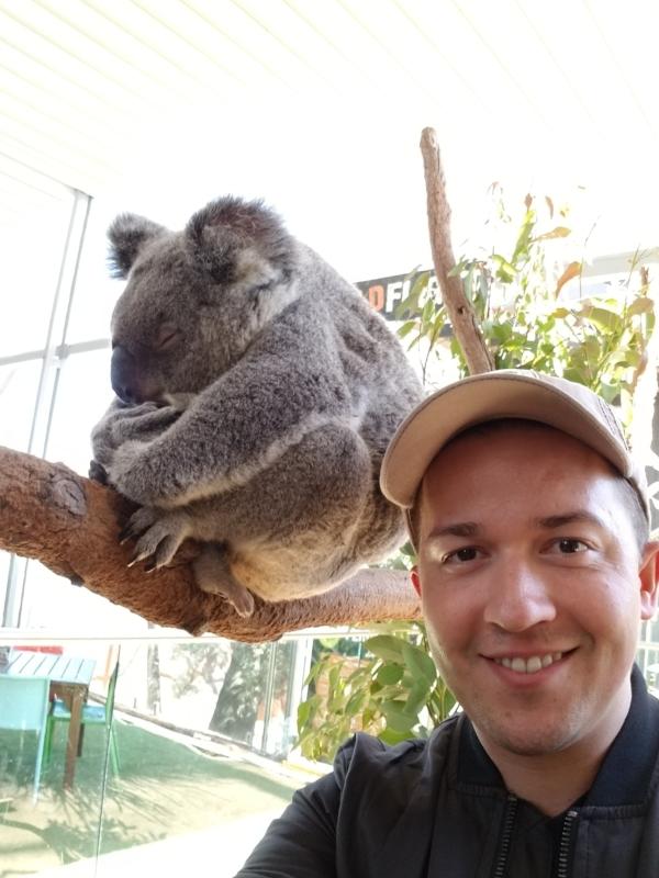 Koala! (on the left)