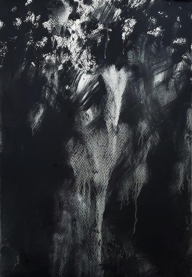 Treetops at Dusk