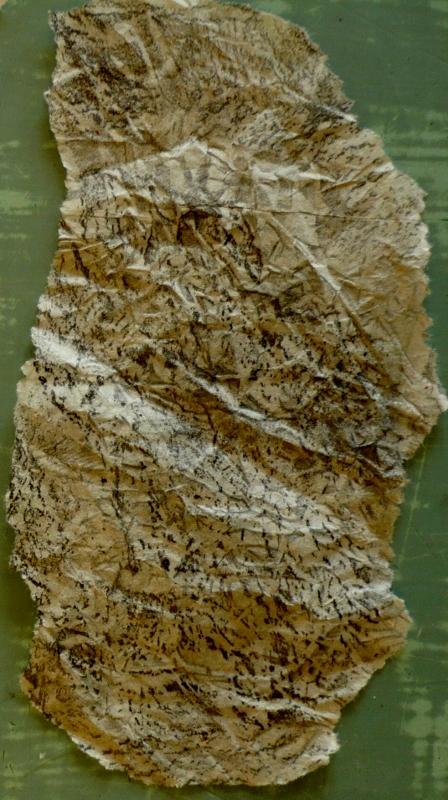 rock rubbing drawing
