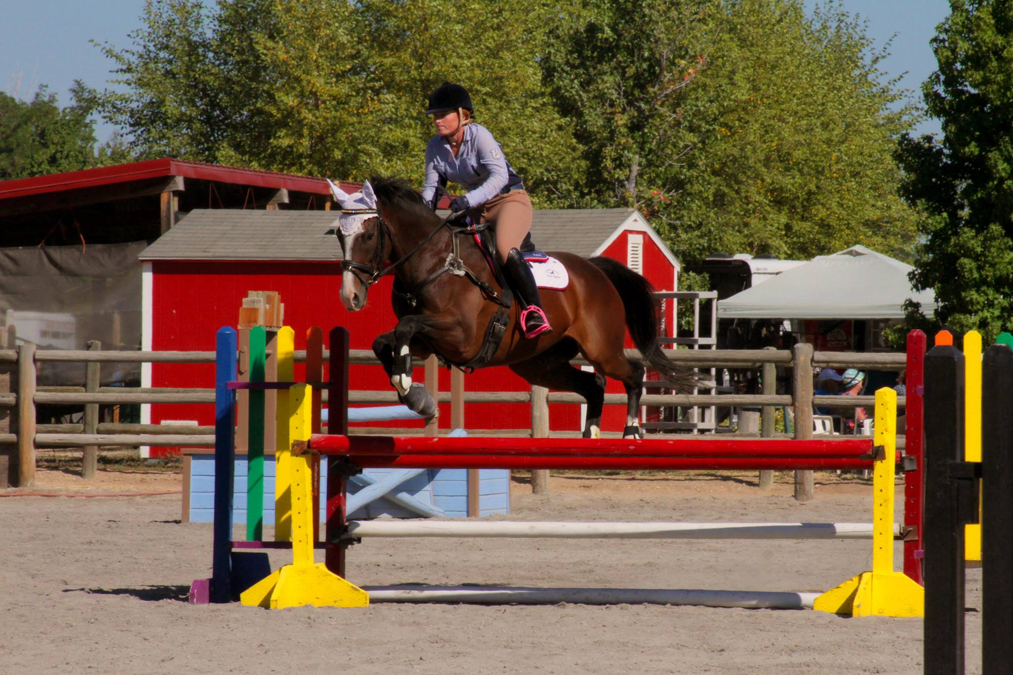 Prisoner jumping the jumps at another horse show PC: Alyssa