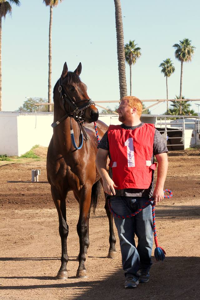 Horses, the only competition for Hubby's heart that I have to worry about