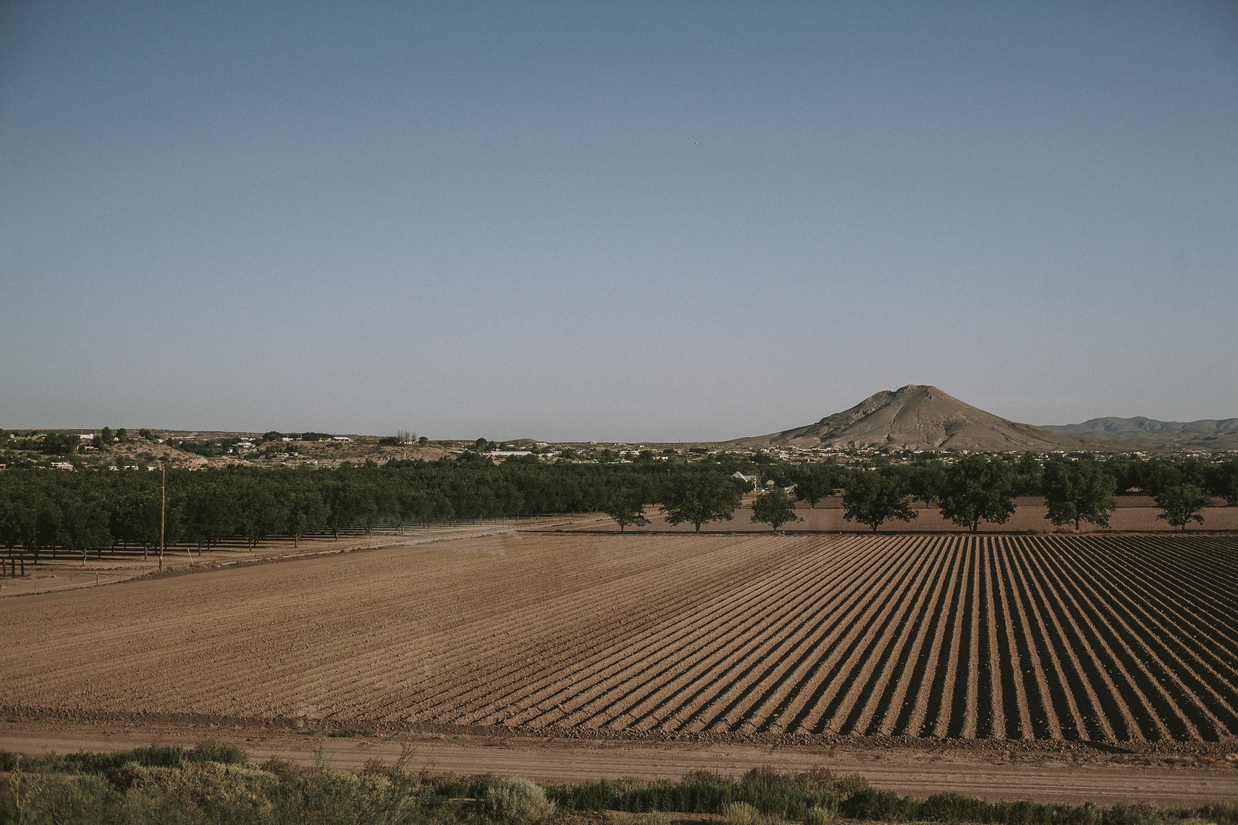Arizona Landscape 1.jpg