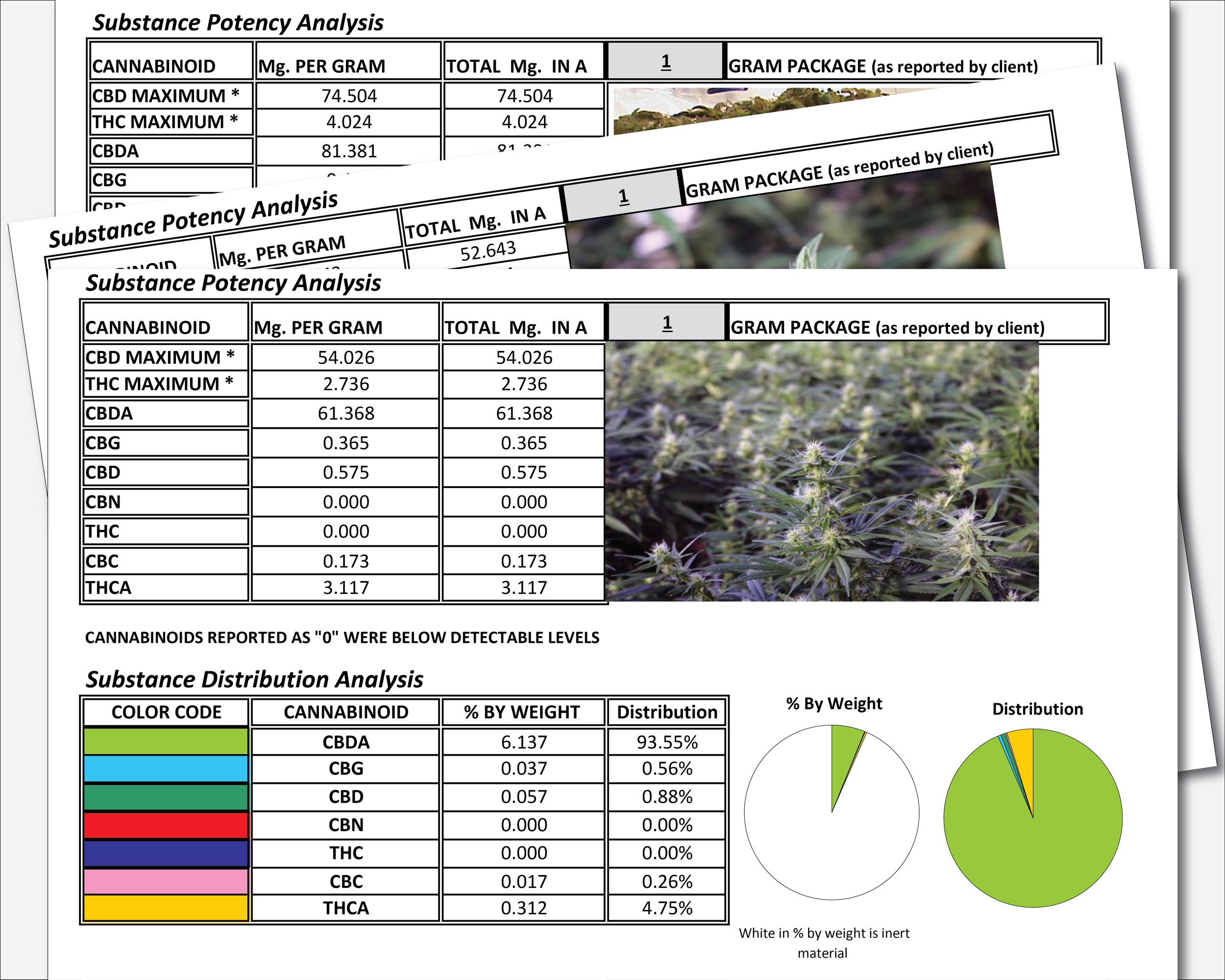 greenhouse-growing-system-hemp-lab-testing.png