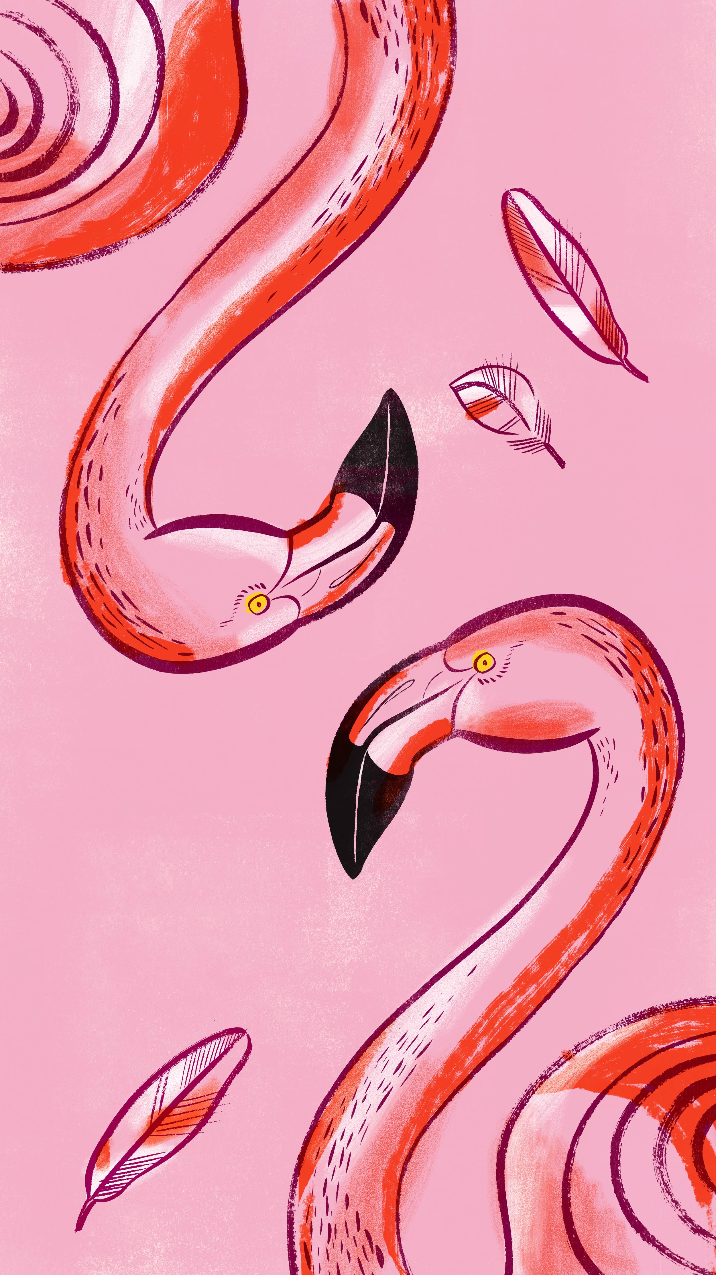 flamingoes2.jpg