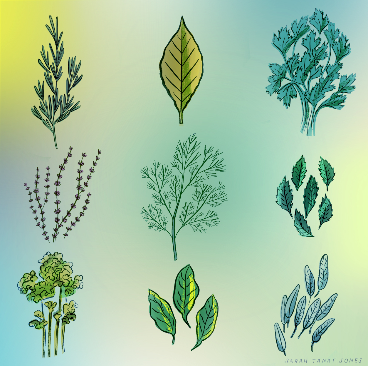 Herbs-small.jpg