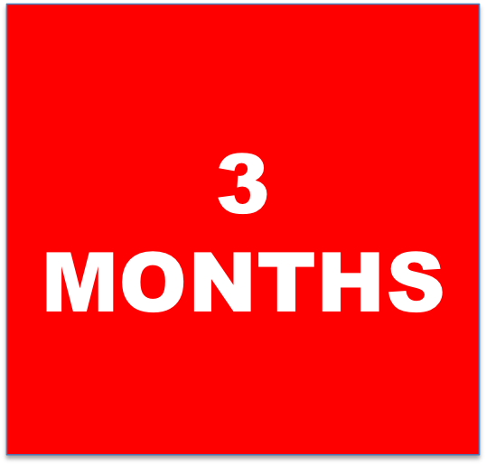 3 months.png