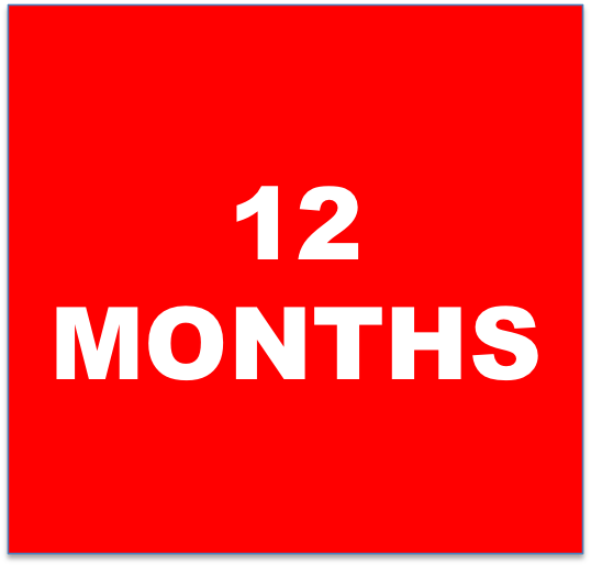 12 months.png