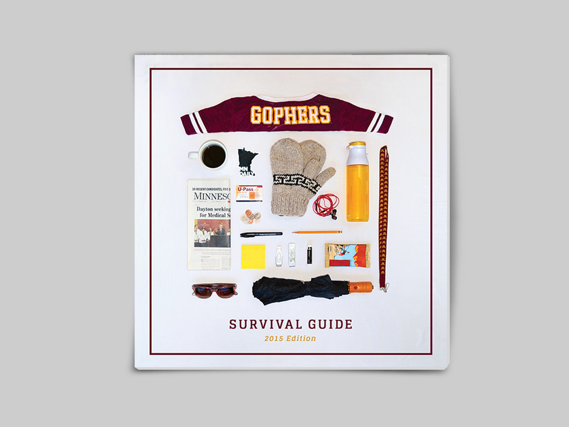 survival guide Front Cover mockup.jpg