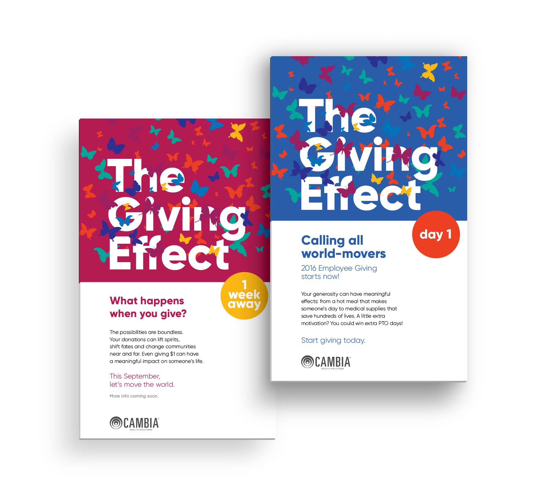 The Giving Effect - Cambia's Annual Giving Campaign