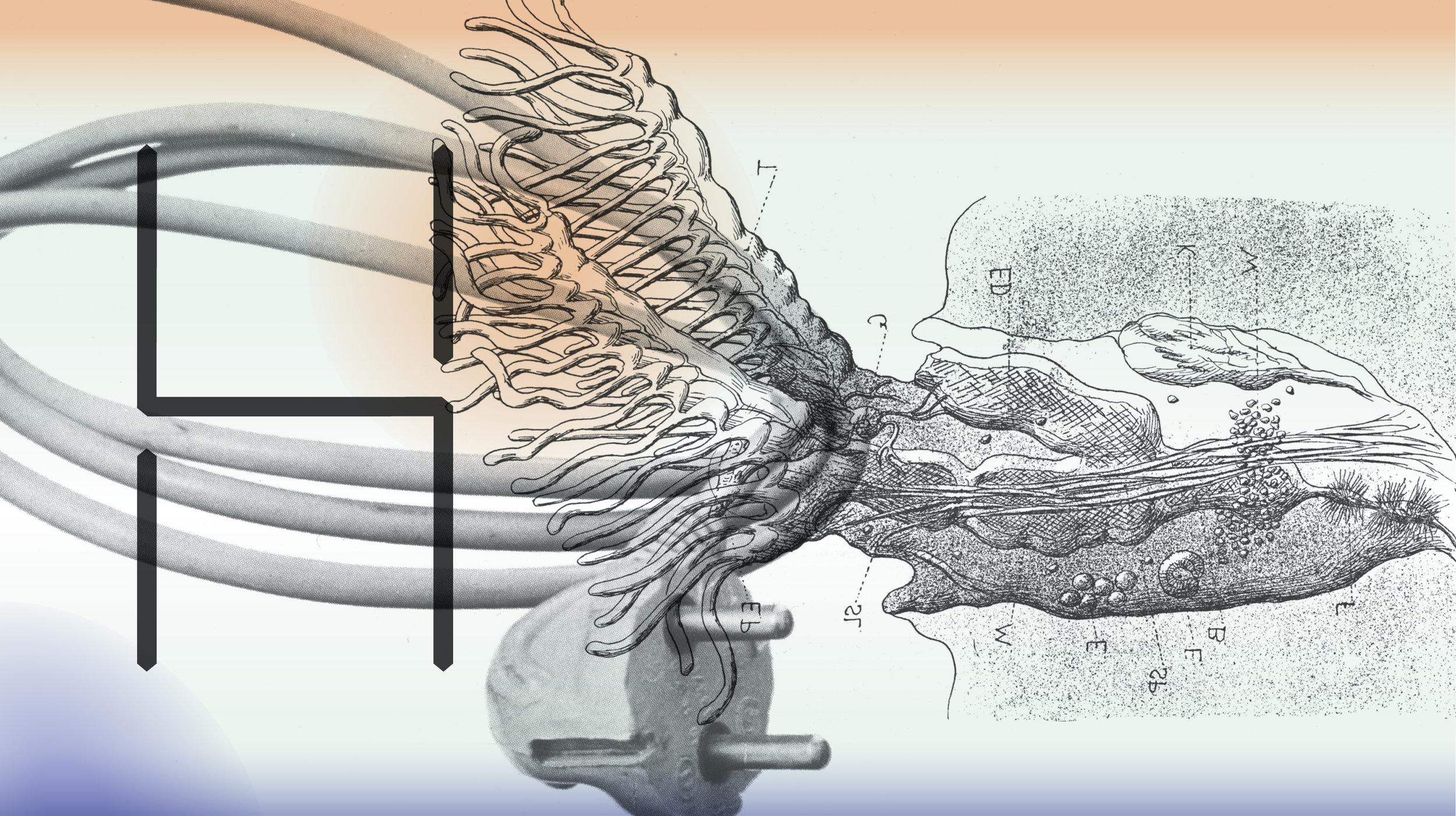 Een beeld van Batia Suter in een ontwerp door de grafische studio Ronny & Johny