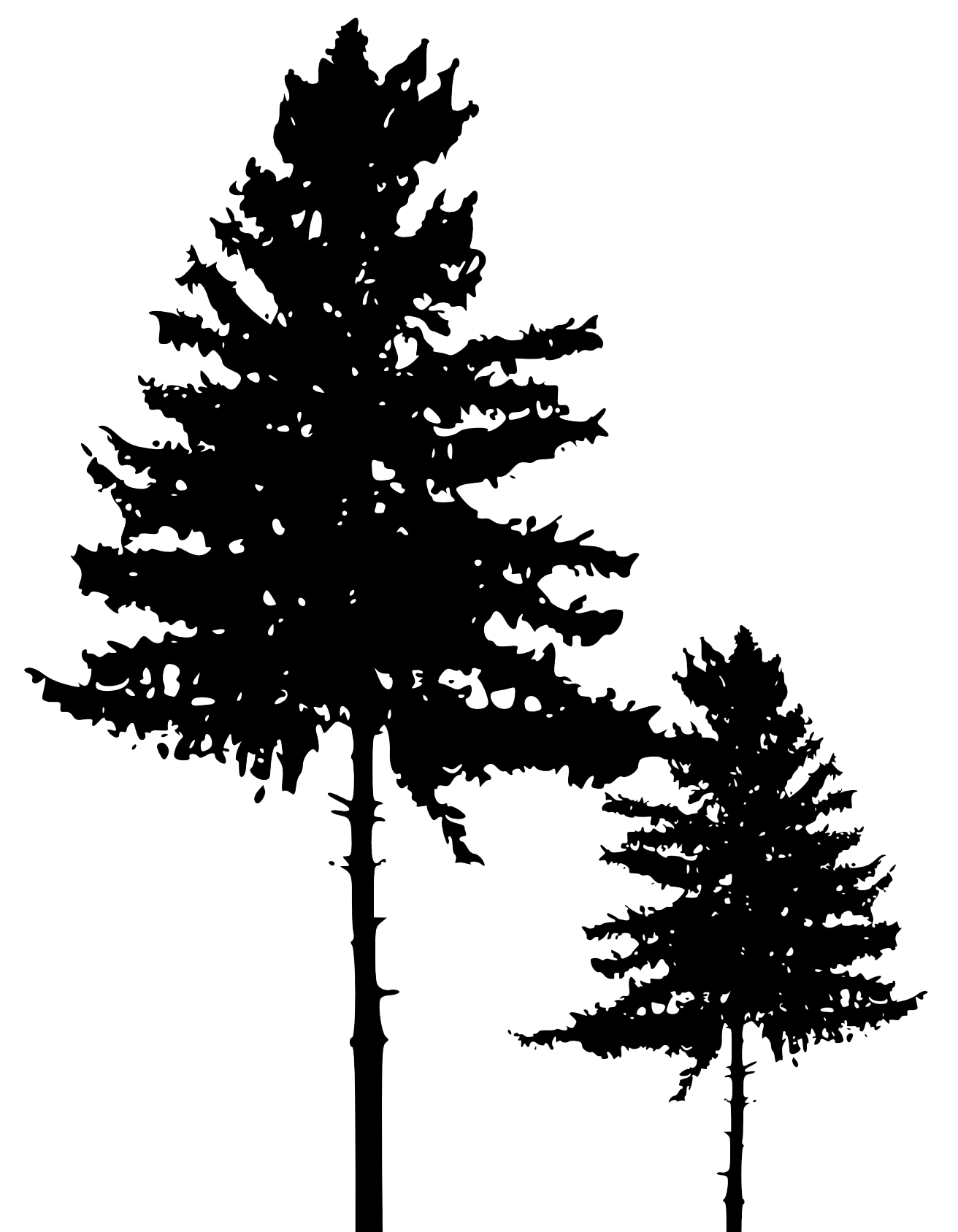 Tree Silhouette 3.png