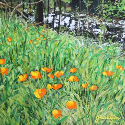 "California Poppies on the Santa Rosa Creek Trail    12""x12"", acrylic on black canvas"