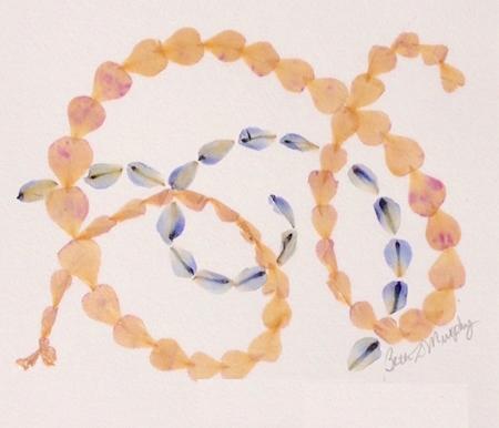 """Zen Petals Pressed rose and delphinium petals, 11""""x14"""""""
