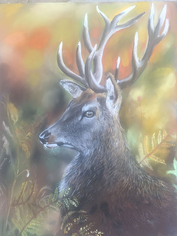 Stag in Autumn Pastel