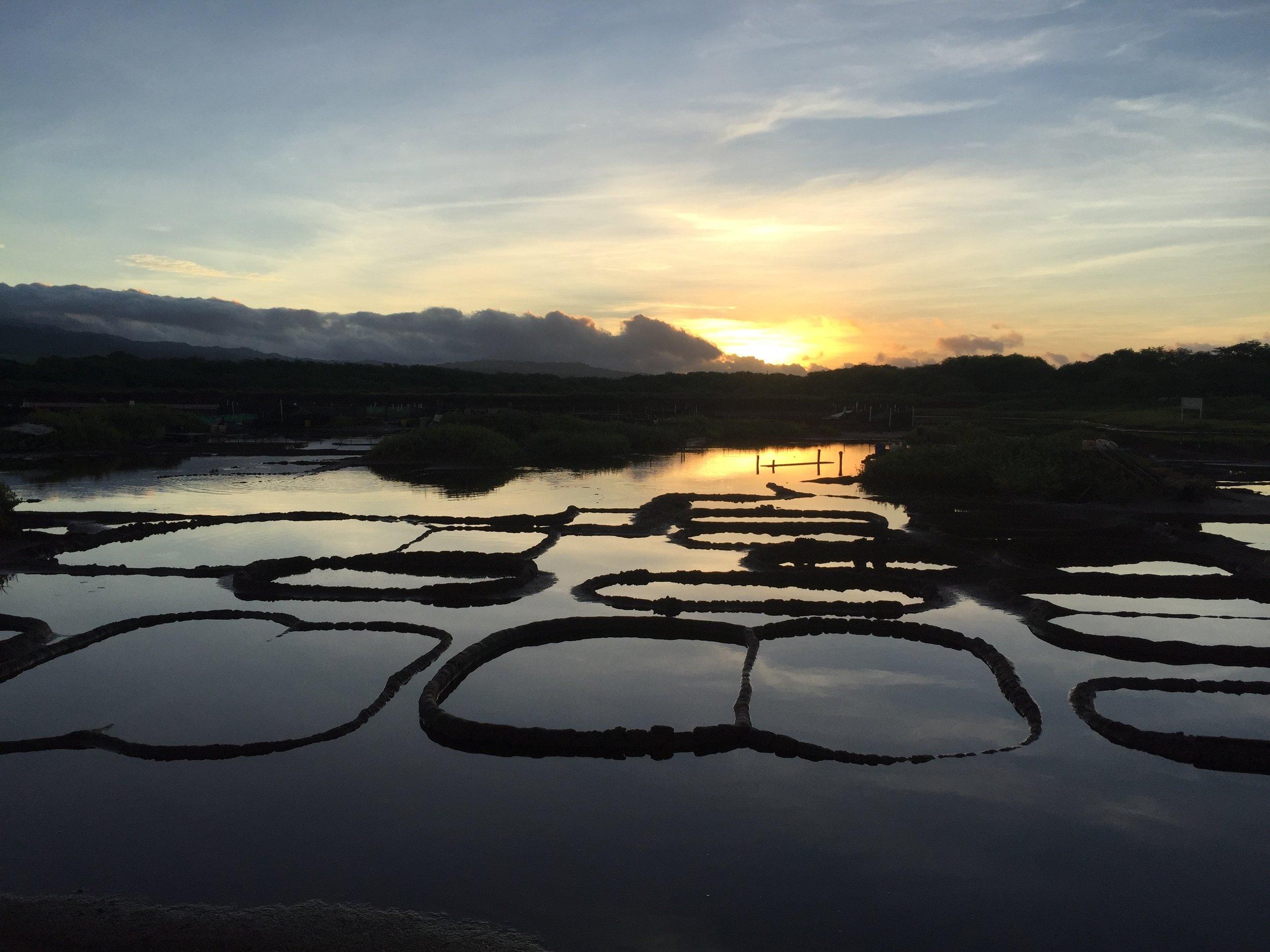 """""""Salt Pond Sunrise"""" Photo courtesy of  Seth Womble"""